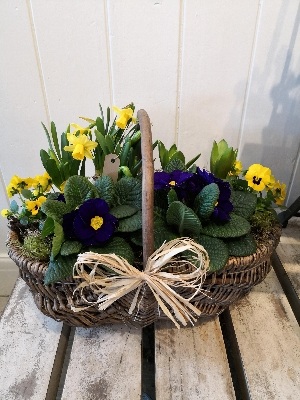 Large spring planted trug