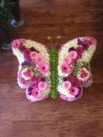 large Butterfly, white, pink and mauve